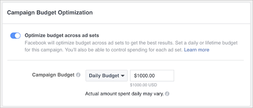 Campaing Budget Optimization
