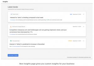 Screenshot of Google Insights Page